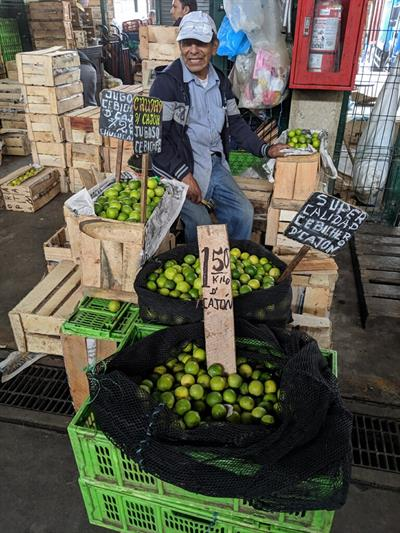 Peru - Wholesale Market Tour 3