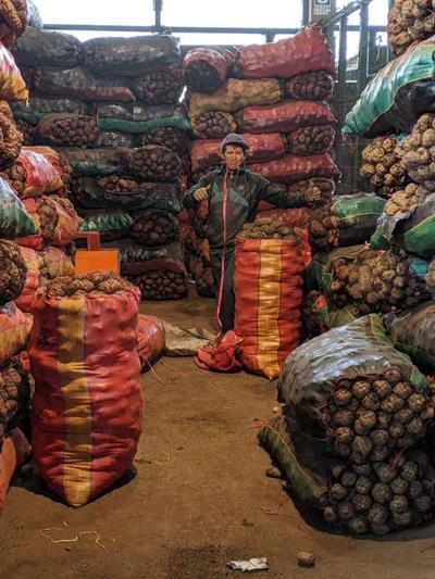 Peru - Wholesale Market Tour 4