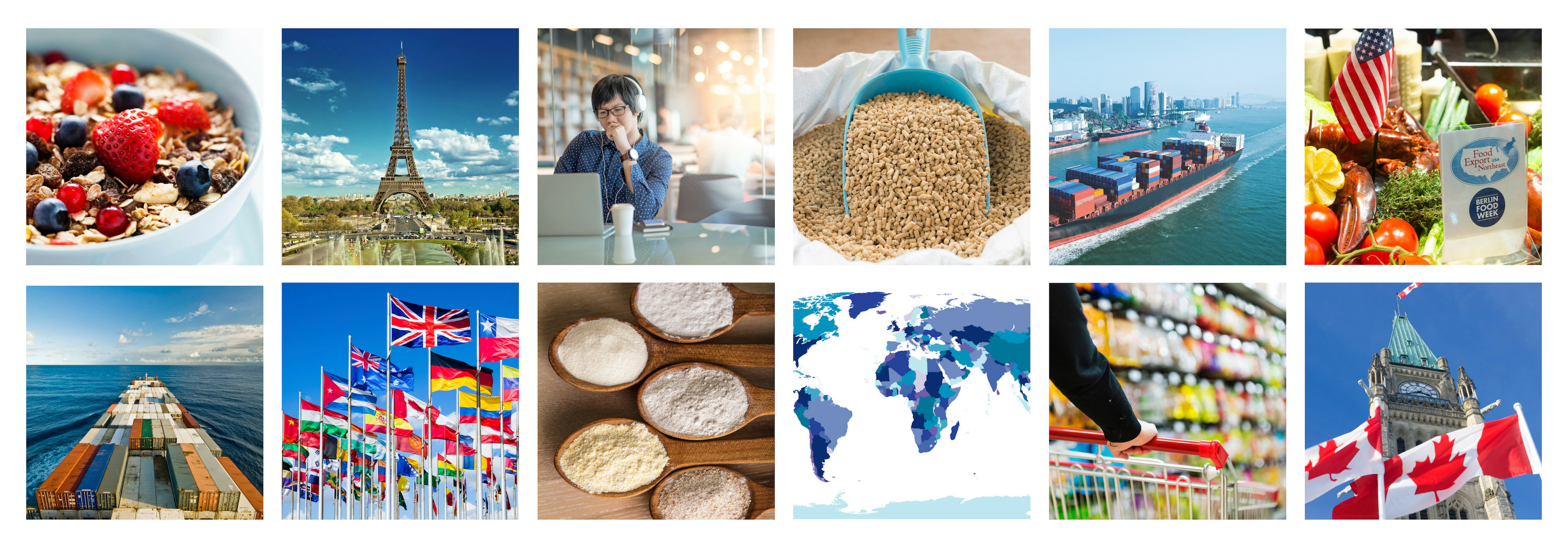 Food Export Blog