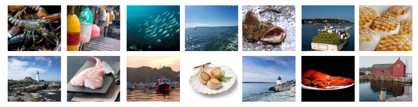 Seafood Blog Header