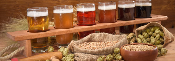 Beer Ingredients Buyers Mission at Brew Expo 2020