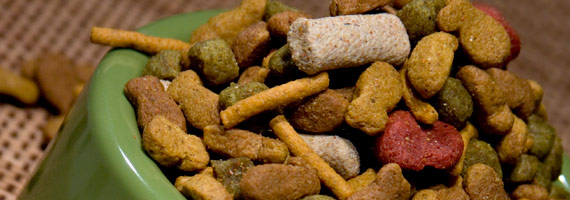 Virtual Buyers Mission: Pet Food
