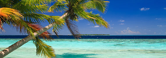 """Webinar """"Export to Warm & Friendly Waters: Consider the Caribbean"""""""